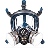 Organic Vapor Respirator full face gas mask with Activated Carbon Air Filter (S100+filter) (Color: S100+filter)