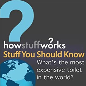 What 39 S The Most Expensive Toilet In The World