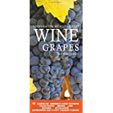 Vinifera: The World's Great Wine Grapes and Their Stories ~ Ghigo Press
