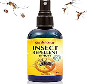 Insect Repellent Spray Best Mosquito Bug