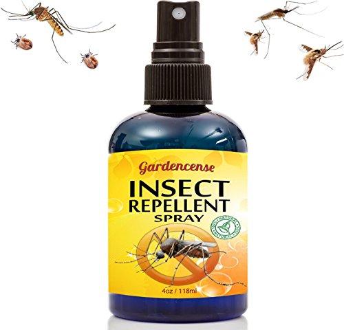 Best Safe Dog Repellent Spray