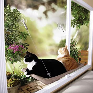 Amazon.com : The Original Sunny Seat Window-Mounted Cat Bed : Pet Window Perches : Pet Supplies