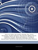 Articles on Trees of India, Including: Ashoka Tree, Ficus Benjamina, Shorea Robu...