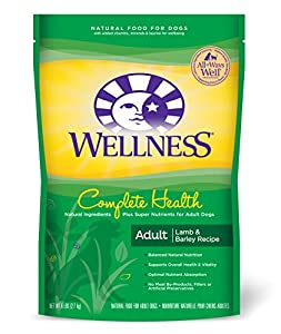 Wellness Complete Health Natural Dry Dog Food, Lamb, Barley & Salmon Meal Recipe, 6-Pound Bag