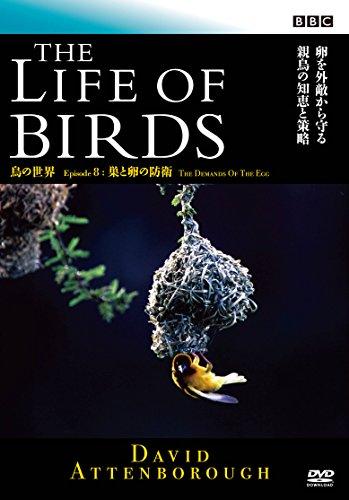 BBC 鳥の世界8 巣と卵の防衛 [DVD]