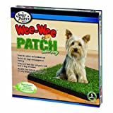 Four Paws Wee-Wee Patch Indoor Potty, Small, 20 x 20