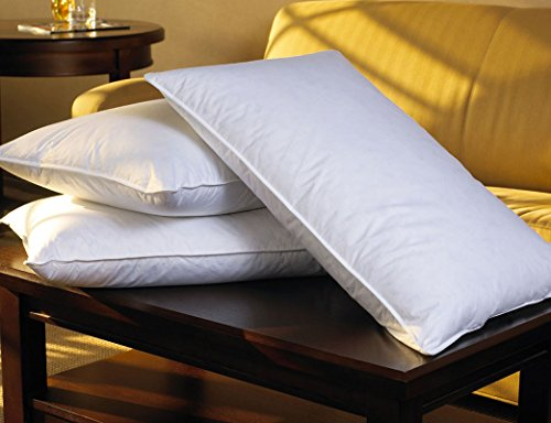 sheraton-hotel-queen-feather-down-pillow
