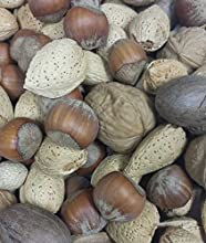 Mixed Nuts - No Brazils - In Shell - 25 lb
