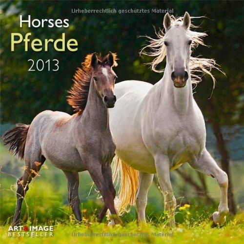 Pferde 2013 Broschürenkalender