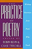 img - for The Practice of Poetry: Writing Exercises From Poets Who Teach book / textbook / text book