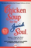 Chicken Soup for the Jewish Soul: Stories to Open the Heart and Rekindle the Spirit (Chicken Soup for the Soul)