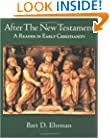 After the New Testament: A Reader in Early Christianity