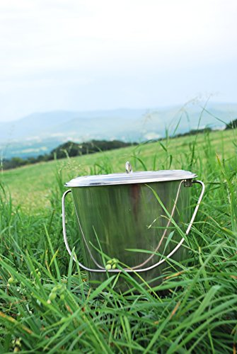 Stainless Steel Milk Pail Bucket with Lid, Handle, and Open Lip Edge, Also Good for Compost (10.5 Qt Pail with Lid) (Stainless Steel Pail With Lid compare prices)