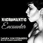 Necromantic Encounter: Dark Paranormal Erotica | Sakura von Sternberg
