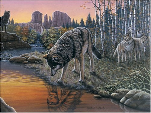 Native American Names For Wolf front-1077610