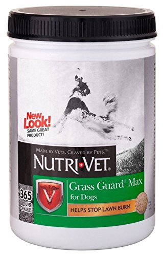 Nutri-Vet® Grass Guard® Max Chewables With Probiotics For Dogs, 365Ct, Safety-Sealed