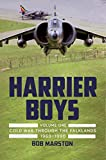 Harrier Boys Volume One: Cold War through the Falklands, 1969-1990