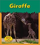 img - for Giraffe (Zoo Animals) book / textbook / text book