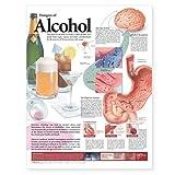 Dangers of Alcohol Chart