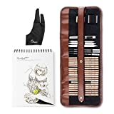 29 Pieces Professional Sketch & Drawing Art Tool Kit with Graphite Pencils, Charcoal Pencils, Paper Erasable Pen, Craft Knife-Lightwish (with Sketchbook, Canvas Rolling Pouch) (Color: Canvas Rolling Pouch, Tamaño: with Sketchbook)