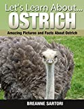 Ostriches: Amazing Pictures and Facts About Ostriches (Lets Learn About)