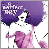 A Perfect Day - A Perfect Blend Various