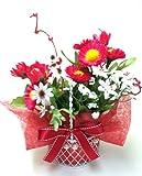 風水フラワー デイジーマム 赤 仕事運 東向き 風水カラーで運気アップ 光触媒 造花