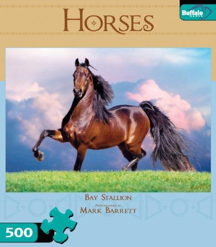 Horses-Bay-Stallion
