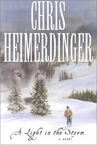 A Light in the Storm: A Novel, CHRIS HEIMERDINGER
