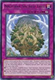 Yu-Gi-Oh! - Naturia Sacred Tree (NECH-EN076) - The New Challengers - 1st Edition - Rare