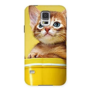 Ajay Enterprises Wo Bucket Kitty Back Case Cover for Samsung Galaxy S5