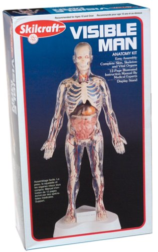 Visible Man Kit (Human Body Model compare prices)