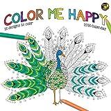 TF Publishing 16-1018 2016 Color Me Happy Wall Calendar
