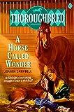 Thoroughbred #01 A Horse Called Wonder