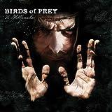 Warriors Of Mud...The Hellf... - Birds Of Prey