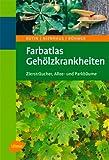 Farbatlas Gehölzkrankheiten: Ziersträucher, Allee- und Parkbäume
