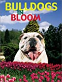 img - for Bulldogs in Bloom book / textbook / text book