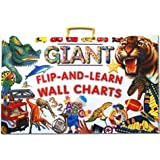 Flip and Learn Wall Chart