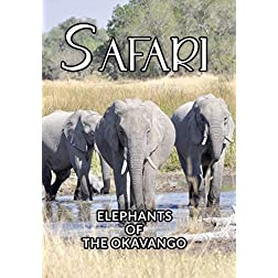 Safari Elephants Of The Okavango