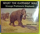 what the elephant was strange prehistoric elephants.