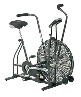 Schwinn Airdyne Ad4 Upright Exercise Bike from Schwinn