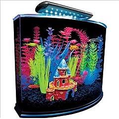 GloFish 29045 Aquarium Kit with Blue LED light, 5 Gallon