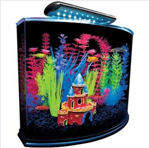 GloFish 29045 Aquarium Kit with Blue LED light, 5