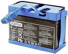 Comprar Peg Perego - Batería para vehículo eléctrico (12 V, 7 Ah)