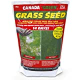 Exciting Canada Green Grass Seed 1kg Pack