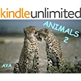 Children's Book: Animals 2 (Amazing Pictures Of Animals For Kids)(Beginner Readers eBook Series for age 2-6)