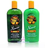 Fantasia IC Tea Tree Naturals Shampoo 12oz + Conditioner 12oz (Combo Set)