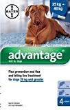 Best Dog Fleas - Advantage 400 Spot-On Solution for Dogs Review