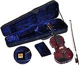 Steinbach 4/4 Geige im SET