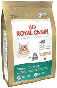 royal canin dry cat food maine coon 31. Black Bedroom Furniture Sets. Home Design Ideas